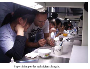 supervision-par-techniciens-francais